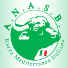 II Assemblea Generale ANASB – 30 ottobre 2020
