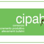 CIPAB e miglioramento genetico. La chiave del successo dell'allevamento moderno