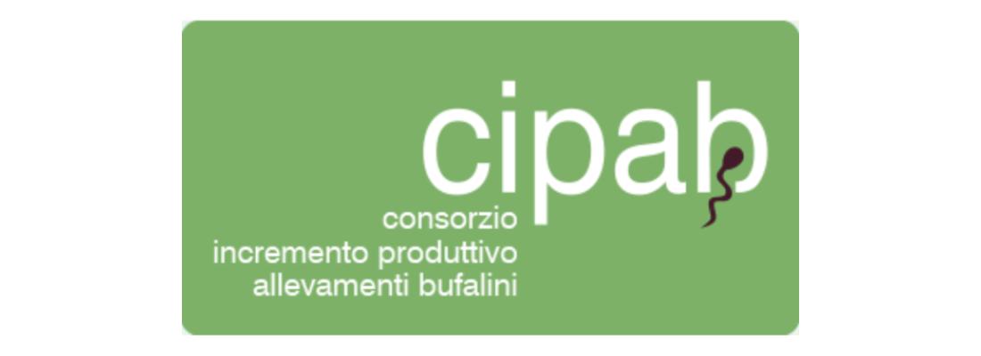 CIPAB e il miglioramento genetico. Componente di successo dell'allevamento bufalino